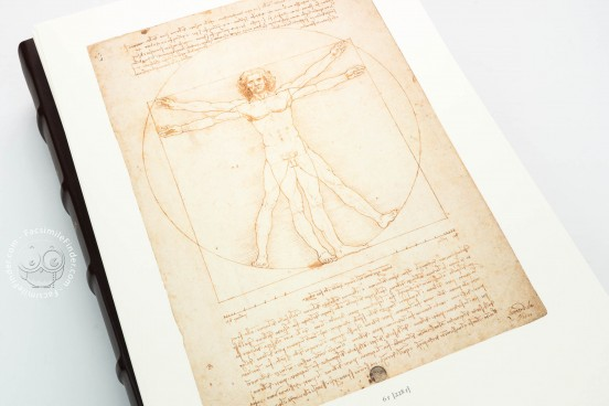 Drawings of Leonardo da Vinci and his circle - Gallerie dell'A, Gallerie dell'Accademia - Gabinetto Disegni e Stampe (Venice, Italy) − photo 1