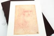 Drawings of Leonardo da Vinci and his circle - Gallerie dell'A, Gallerie dell'Accademia - Gabinetto Disegni e Stampe (Venice, Italy) − photo 2