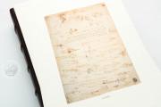 Drawings of Leonardo da Vinci and his circle - Gallerie dell'A, Gallerie dell'Accademia - Gabinetto Disegni e Stampe (Venice, Italy) − photo 5