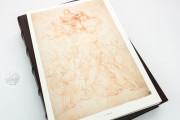 Drawings of Leonardo da Vinci and his circle - Gallerie dell'A, Gallerie dell'Accademia - Gabinetto Disegni e Stampe (Venice, Italy) − photo 11
