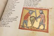 The Willehalm, Vienna, Österreichische Nationalbibliothek, Codex Vindobonensis 2670 − Photo 12