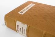 The Willehalm, Vienna, Österreichische Nationalbibliothek, Codex Vindobonensis 2670 − Photo 20