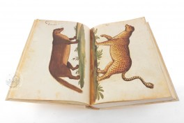 Natural history atlas of Philiph II - Pomar Codex Facsimile Edition