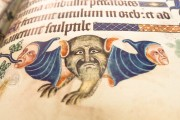 Luttrell Psalter, Add. Ms. 42130 - British Library (London, United Kingdom) − photo 5