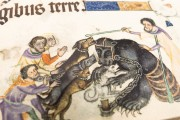 Luttrell Psalter, Add. Ms. 42130 - British Library (London, United Kingdom) − photo 8