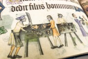 Luttrell Psalter, Add. Ms. 42130 - British Library (London, United Kingdom) − photo 10