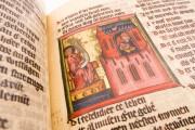 Apocalypse - Heinrich von Hesler, Toruń, Biblioteka Uniwersytecka Mikołaj Kopernik w Toruniu, Rps 64/III − Photo 8