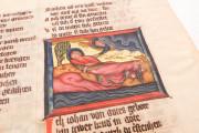 Apocalypse - Heinrich von Hesler, Toruń, Biblioteka Uniwersytecka Mikołaj Kopernik w Toruniu, Rps 64/III − Photo 10