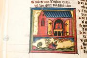Apocalypse - Heinrich von Hesler, Toruń, Biblioteka Uniwersytecka Mikołaj Kopernik w Toruniu, Rps 64/III − Photo 23