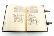 Nicolaus Copernicus - De revolutionibus orbium coelestium libri , Pol.6 III.142 - Biblioteka Uniwersytecka Mikołaj Kopernik w Toruniu (Toruń, Poland) − photo 4