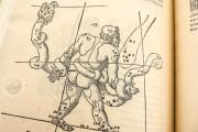 Nicolaus Copernicus - De revolutionibus orbium coelestium libri , Pol.6 III.142 - Biblioteka Uniwersytecka Mikołaj Kopernik w Toruniu (Toruń, Poland) − photo 17