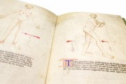 Libro de Cauteri, ms. Fanzago 2, I, 5, 28 - Biblioteca Medica