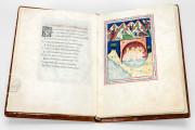 De Balneis Puteolanis (Pietro da Eboli), BH Ms. 0838 (Olim 860 - GC 2396) - Biblioteca de la Universidad de Valencia − photo 9