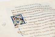 De Balneis Puteolanis (Pietro da Eboli), BH Ms. 0838 (Olim 860 - GC 2396) - Biblioteca de la Universidad de Valencia − photo 10