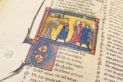 Romance of the Rose of Berthaud d'Achy, Vatican City, Biblioteca Apostolica Vaticana, Urb. lat. 376 − Photo 3
