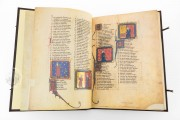 Romance of the Rose of Berthaud d'Achy, Vatican City, Biblioteca Apostolica Vaticana, Urb. lat. 376 − Photo 5