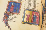 Romance of the Rose of Berthaud d'Achy, Vatican City, Biblioteca Apostolica Vaticana, Urb. lat. 376 − Photo 14