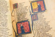 Romance of the Rose of Berthaud d'Achy, Vatican City, Biblioteca Apostolica Vaticana, Urb. lat. 376 − Photo 15