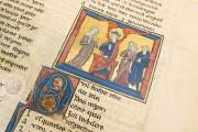 Romance of the Rose of Berthaud d'Achy, Vatican City, Biblioteca Apostolica Vaticana, Urb. lat. 376 − Photo 17
