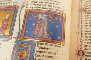 Romance of the Rose of Berthaud d'Achy, Vatican City, Biblioteca Apostolica Vaticana, Urb. lat. 376 − Photo 18