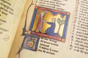 Romance of the Rose of Berthaud d'Achy, Vatican City, Biblioteca Apostolica Vaticana, Urb. lat. 376 − Photo 21