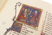 Romance of the Rose of Berthaud d'Achy, Vatican City, Biblioteca Apostolica Vaticana, Urb. lat. 376 − Photo 22