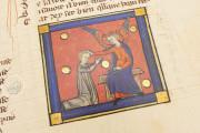 Romance of the Rose of Berthaud d'Achy, Vatican City, Biblioteca Apostolica Vaticana, Urb. lat. 376 − Photo 26
