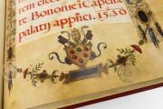 The Crowning Ceremonial of Emperor Charles V, Vatican City, Biblioteca Apostolica Vaticana, Borg. lat. 420 − Photo 11