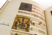 The Crowning Ceremonial of Emperor Charles V, Vatican City, Biblioteca Apostolica Vaticana, Borg. lat. 420 − Photo 16