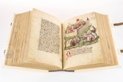 Tschachtlan's Illustrated Chronicle, Zürich, Zentralbibliothek Zürich, Ms. A 120 − Photo 8