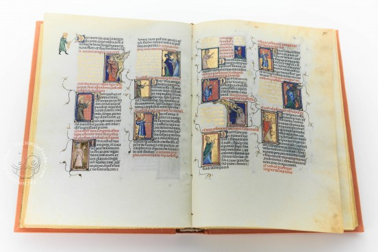 Breviari d'Amor de Matfre Ermengaud, Ms. Prov. F. V. XIV.1 - National Library of Russia (St. Petersburg) − photo 1