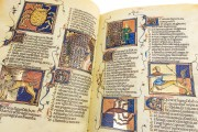 Breviari d'Amor de Matfre Ermengaud, St. Petersburg, National Library of Russia, Ms. Prov. F. V. XIV.1 − Photo 7