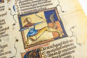 Breviari d'Amor de Matfre Ermengaud, St. Petersburg, National Library of Russia, Ms. Prov. F. V. XIV.1 − Photo 11