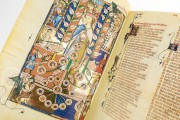 Breviari d'Amor de Matfre Ermengaud, St. Petersburg, National Library of Russia, Ms. Prov. F. V. XIV.1 − Photo 14