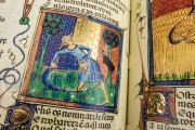 Breviari d'Amor de Matfre Ermengaud, St. Petersburg, National Library of Russia, Ms. Prov. F. V. XIV.1 − Photo 15