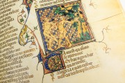 Breviari d'Amor de Matfre Ermengaud, St. Petersburg, National Library of Russia, Ms. Prov. F. V. XIV.1 − Photo 19