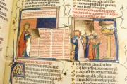 Breviari d'Amor de Matfre Ermengaud, St. Petersburg, National Library of Russia, Ms. Prov. F. V. XIV.1 − Photo 20