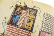 Breviari d'Amor de Matfre Ermengaud, St. Petersburg, National Library of Russia, Ms. Prov. F. V. XIV.1 − Photo 22