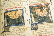 Breviari d'Amor de Matfre Ermengaud, St. Petersburg, National Library of Russia, Ms. Prov. F. V. XIV.1 − Photo 28