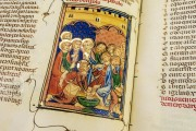 Breviari d'Amor de Matfre Ermengaud, St. Petersburg, National Library of Russia, Ms. Prov. F. V. XIV.1 − Photo 34