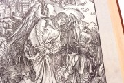 Apocalypse with Pictures by Albrecht Dürer, Incunable nº 1 - Biblioteca Nacional de España (Madrid, Spain) − photo 7