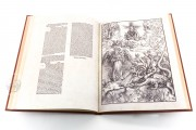 Apocalypse with Pictures by Albrecht Dürer, Incunable nº 1 - Biblioteca Nacional de España (Madrid, Spain) − photo 21