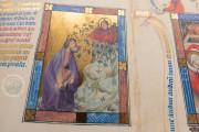 Golden Bible - Biblia Pauperum, Kings MS 5 - British Library (London, United Kingdom) − photo 9