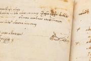 Pontormo's Diary, Florence, Biblioteca Nazionale Centrale, ms Magl. VIII 1490 − Photo 13