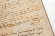 Pontormo's Diary, Florence, Biblioteca Nazionale Centrale, ms Magl. VIII 1490 − Photo 14