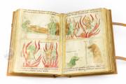 Bible of Pamplona, Cod.I.2.4° 15 - Collection Oettingen-Wallenstein, Universitätsbibliothek Augsburg (Germany) − photo 11