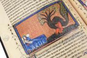 Apocalypse Yates Thompson, London, British Library, Ms Yates Thompson 10 − Photo 19