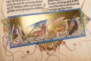 Ottheinrich's Bible, Munich, Bayerische Staatsbibliothek, Cgm 8010/1.2 − Photo 5