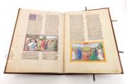 Ottheinrich's Bible, Munich, Bayerische Staatsbibliothek, Cgm 8010/1.2 − Photo 14