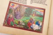 Ottheinrich's Bible, Munich, Bayerische Staatsbibliothek, Cgm 8010/1.2 − Photo 15